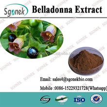 Atropa Belladonna Extract Powder /Natural Atropa Belladonna P.E. /Atropine