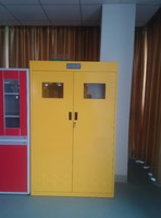 SYF Laboratory furniture Explosion - proof Gas cabinet