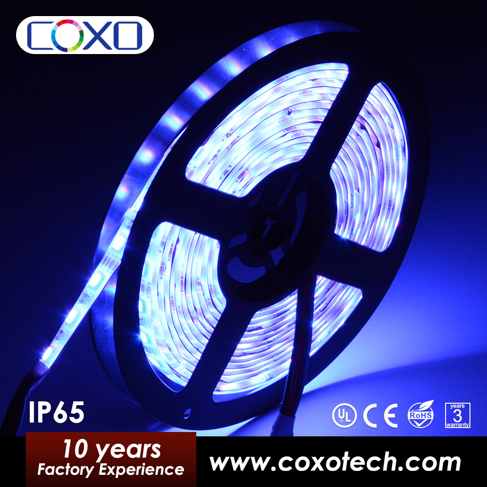 New Arrivals Christmas Decorative Blue 5050 SMD Flexible Led Strip Light w/ 3M Adhesive Back Remote Control