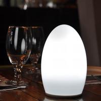 Stylish led plant indoor light restaurant portable battery led lights