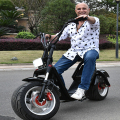 remove battery mobility electrical scooter citycoco harley electric scooter mobility motorcycle