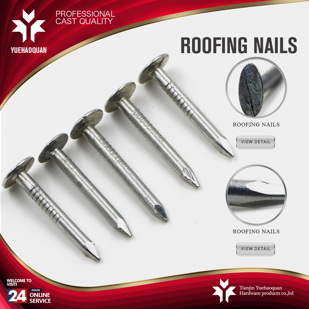 Factory supply what are clout nails with nice price