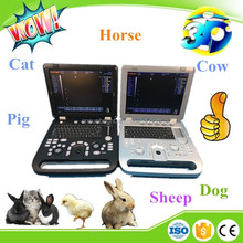 3D Veterinary Ultrasound / Canine Scanners for dog breeders on sale