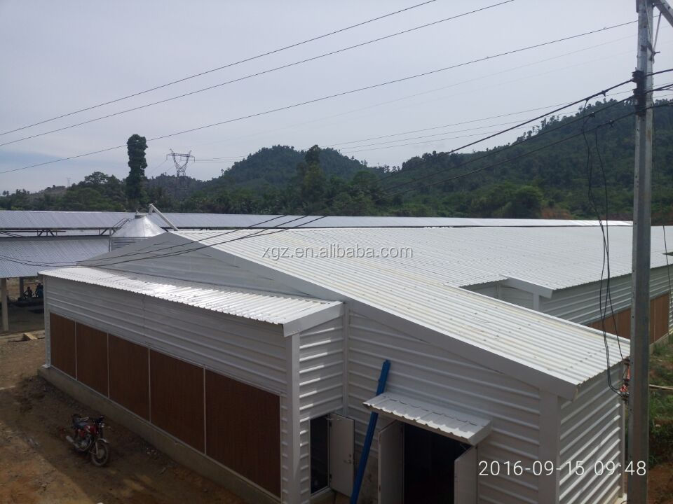 prefabricated industrial shed steel structure building design poultry farm shed layer chicken house for sale