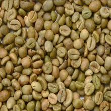 Unwashed Arabica Coffee Beans S16