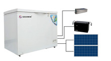New Type Mobile Home Vertical Power saving energy Solar DC deep Freezer