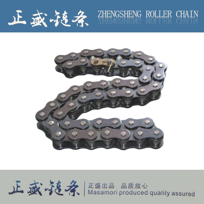 All kinds of transmission conveyor roller chain with attachment duplex roller chain