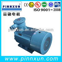 YB Series Flame-Proof Three-Phase ac motor 132kw