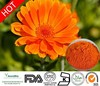 /product-detail/natural-marigold-flower-extract-lutein-20-pure-zeaxanthin-40-20-calendula-officinalis-flower-extract-lutein-powder-60435432481.html