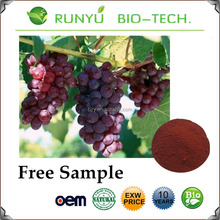 factoy direct supply Wholesale price Grape seed extract capsule, grape seed extract