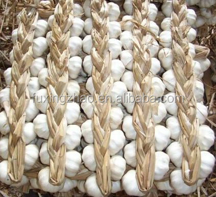 China suppliers New crop Fresh braid garlic with low price high quality