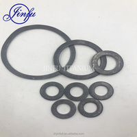 Factory Price OEM Lead Washers For