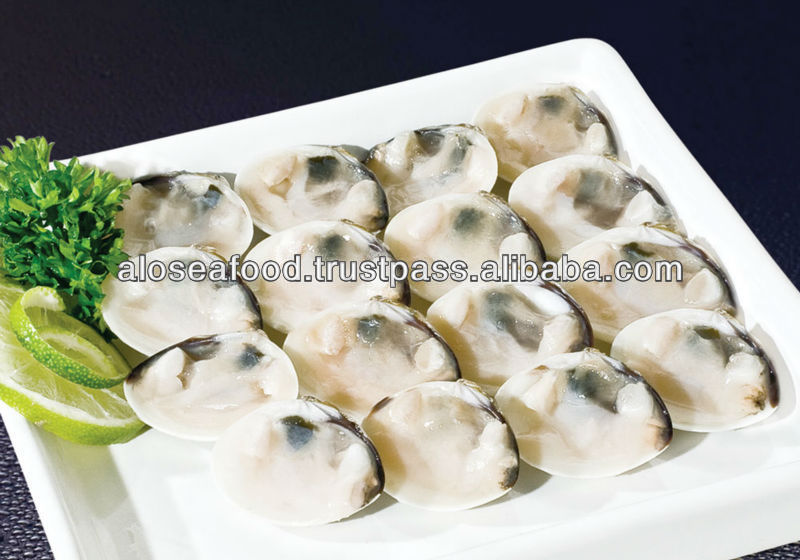 Frozen cooked white clam shell on
