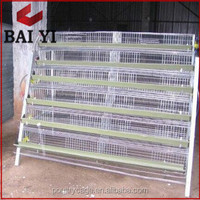 H Type & A Type Wire Mesh Quail Cage For Sale( Best Quality, Competitive Price)