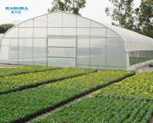 Plastic Film Covered Economic Tunnel Greenhouse For Agricultural planting