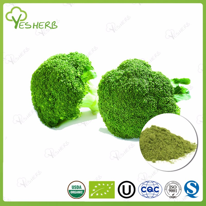 Hot sell broccoli sprout extract powder