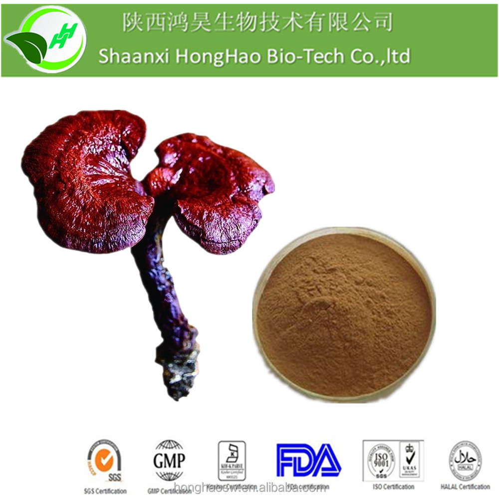 Honghao anticancer ganoderma king of herbs/ganoderma lucidum powder/ganoderma