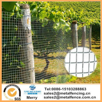 3ftX30m hardware fabric cloth mesh galvanized welded wire mesh