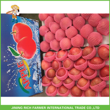 New Crop China Fresh Apple Fruit Specification