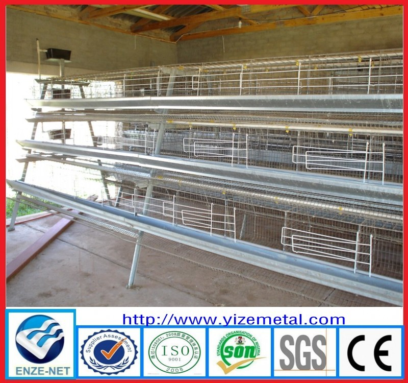 ghana chicken farm sale layer cages