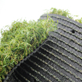 China Supplier Plastic Grass Cover For Football artificial grass