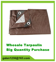 pe tarpaulin,pe fabric,pe sheet,pe tarp,pe roll covering,hengjia low tarpaulin price in haining