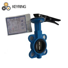 Double flange best price butterfly valve for cement