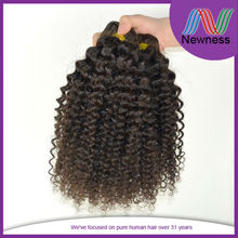 Hot Kinky Curly Brazilian Remy Human Weaving/Newness Hair Products