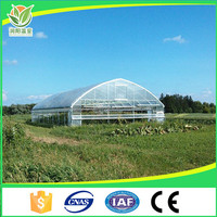 Vegetable Greenhouse For Agriculture Tomato Growing