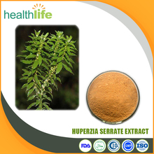 Natural Huperzia Serrata Extract, Huperzine A Powder, Huperzine A 1%