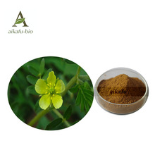 Pure Tribulus Terrestris Extract powder 70% saponins with competitive price