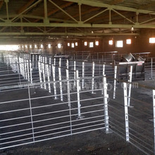 Henan jiyuan pig farm fattening stall for sale
