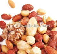 Mixed nuts snacks salted mixed nuts and dried fruits