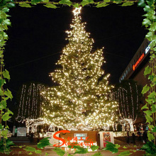 Large Artificial christmas tree , cone shape LED Giant Lighting Christmas Tree