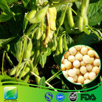 GMP factory women health and skin care 60% soy isoflavones soybean extract