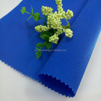 PP Non Woven Fabric,spunbond PP