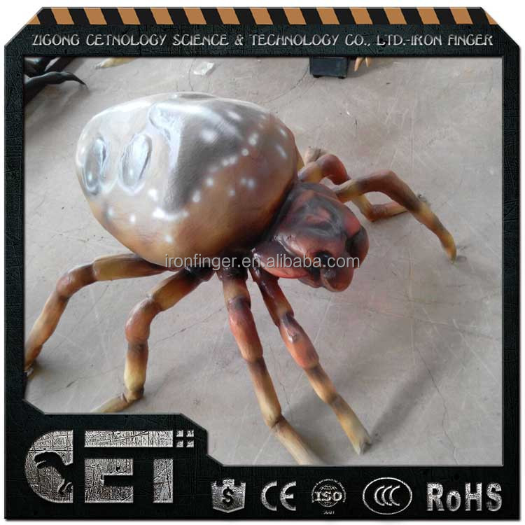 Cetnology live beetle insects for sale