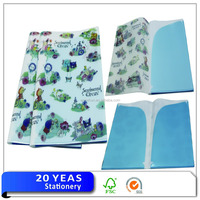 A4 UV Printing/Full Color/4C/CMYK PP No Ring Binder 5 Pockets File