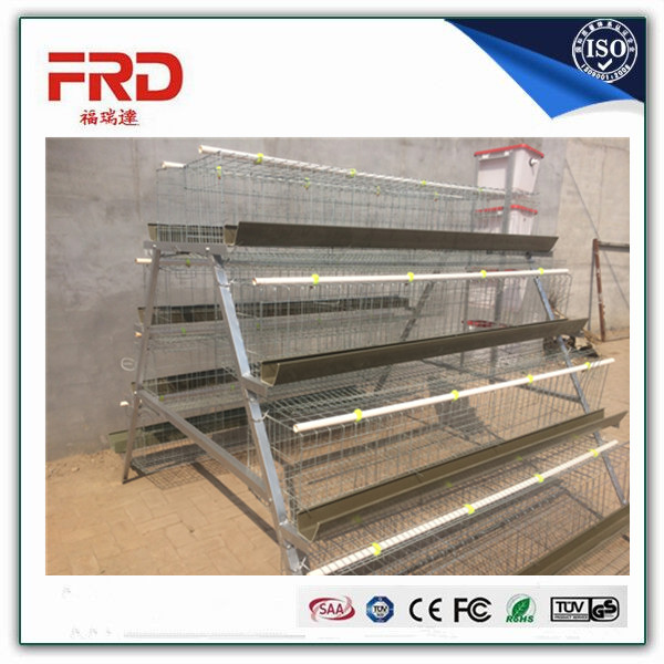 3 tier-A type egg laying chicken cage system/cages for broiler chicken/chicken egg layer cages
