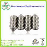 security cone point socket set screw