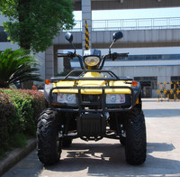 Hot Selling 200cc dazon buggy For Sale