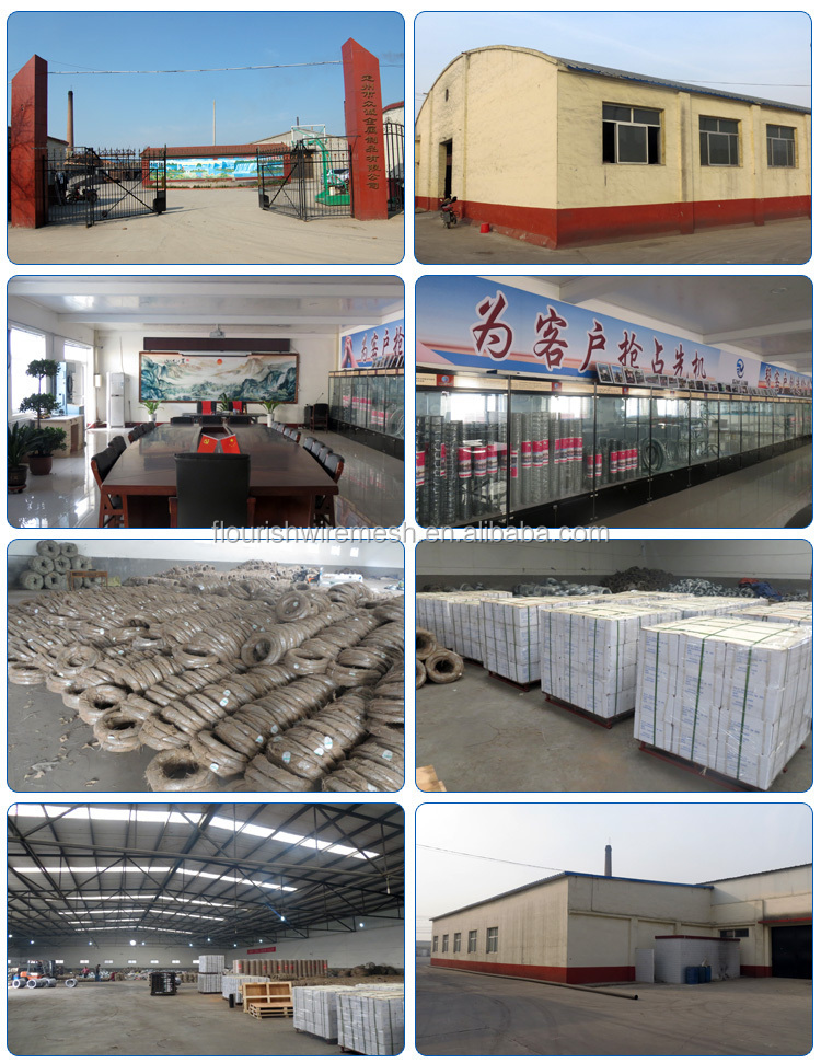 China Factory Cheap Hot Dipped Galvanize Wire/Galvanized Iron Wire/Binding Wire