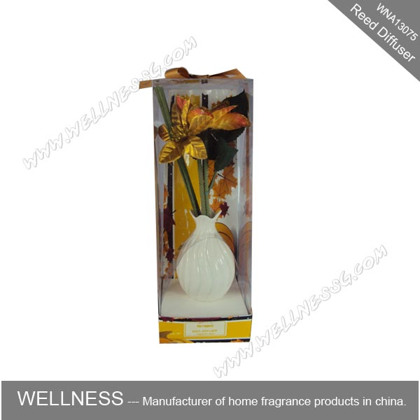 fragrance reed diffuser set with ceramic holder