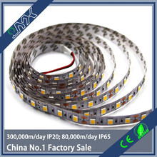 3000k led strip warm white flexible pcb strip CE&RoHS DC 5V/ 12V / 24V 5mm 8mm 10mm 12mm 2835 3528 5050 led strip