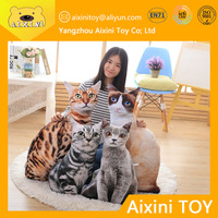 L11 Cat Toys Free Sample Worldwide