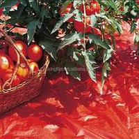 red mulch film for tomato,strawberry 0.05mm*0.6m