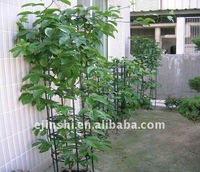 Best quality with low price garden plant support