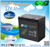 high rate capacity lead acid electric bike battery 12v 55ah