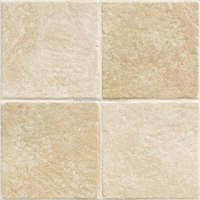 300x300 mm various good design cheap rustic floor tile