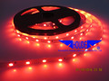 Top quality waterproof 12v 3528 smd RGB Single color pure warm cool cold white led flexible strip light